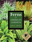 Timber Press, Incorporated Ferns for American Gardens
