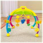 Fisher-Price Growing Baby Gym
