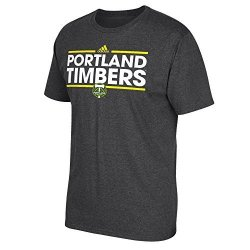 SLD Of The Adidas Group Adidas Mls Portland Timbers Men's Dassler Tee Gray Large
