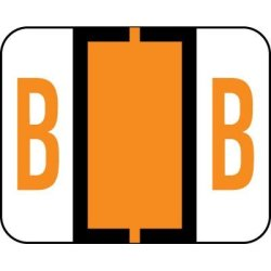 Amzfiling Alphabetic Color Code Labels Compatible With Smead Bccr- Letter B Light Orange 500 ROLL