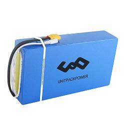 Unitpackpower 1800W 48V Electric Bike Battery 48V 20AH Ebike Battery For 1800W 1500W 1000W 750W 500W Motor Bicycle Lithium Ion Battery With 50A Bms