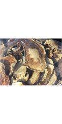 Dried Domestic Porcini Mushrooms 8OZ