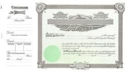 USA Goes 1 Corporate Stock Certificate - Pack Of 100
