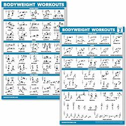 """Quickfit 2 Pack Bodyweight Workout Exercise Poster - Volume 1 & 2 Laminated 18"""" X 27"""" Laminated 18"""" X 27"""""""