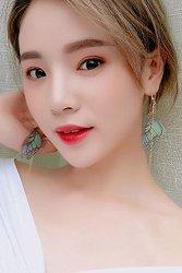 Generic Original_ Jewelry _korean_temperament_long _butterfly_wings_ Earrings Earring Eardrop _ultra-sin_feather-su Ear Fall_of Hair Clip