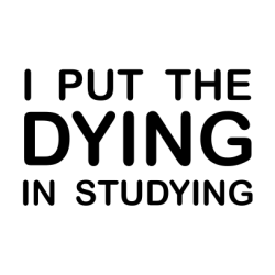 I Put The Dying In Studying White