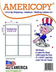 """Americopy 6 Up Labels - Address Labels - - Shipping Mailing Labels - 4"""" X 3-5 16"""" Label Size - Made In The Usa 3 000 Labels"""