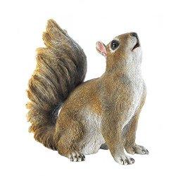 Decor And More Store Realistic Look Bushy Tail Squirrel Garden Decor Statue Figure