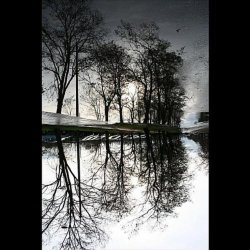 Spiegel Im Spiegel Ambient Version
