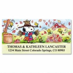 Peanuts Scarecrow Return Address Labels - Set Of 144 Large Self-adhesive Flat-sheet Labels