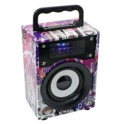 MICROWORLD Portable Radio Speaker