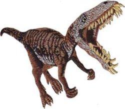 C&D Visionary Inc. Application T-rex Patch