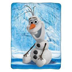 4SGM The Northwest Co. Disney Frozen 'chills & Thrills' Micro Raschel Throw Blanket Multicolor 1DFZ059000006