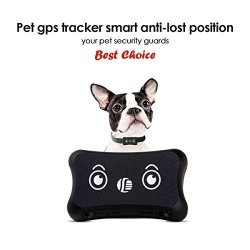DAGPS Pet Gps Tracker Dog Activity Monitor For Android iphonewaterproof  Adjustable Collar For All Sizes Dogs And Pets | R2390 00 | Pet Care &