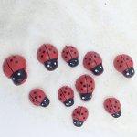 FUNSHOWCASE 10 Assorted Size Ladybug Insect Aquarium Terrariums Miniature Garden Fairy Gardens Ornament Doll House Cake Topper R