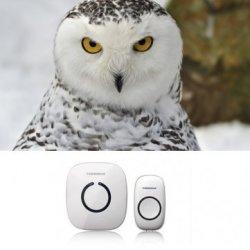 Kyz Kuv Smart Forrinx Digital Eu Ac Wireless Remote Control Home Office Doorbell
