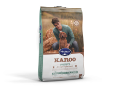 MONTEGO - Karoo Puppy - Large Breed - 8kg