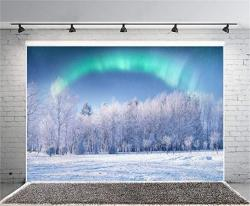 Aofoto 8X6FT Beautiful Frosty Trees Photography Background Aurora White Christmas Backdrop Winter Forest Scenery Northern Lights Lover Adult Kid Portr