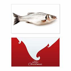 Ocean Fish Alive Activity Holiday Merry Christmas Card Xmas Vintage Message