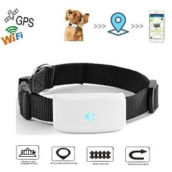 Changsha Hangang Technology Ltd Hangang Gps Pet Tracker Anti-lost Gps Locating Pet Tracker Activity Monitor Tracking In Real Time Free App Smart Collar For Dog Cat Gps Location