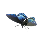 Metal Earth Red Spotted Purple Butterfly