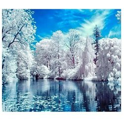 Blxecky 5D Diy Diamond Painting By Number Kits Lake Snow 16X12INCH 40X30CM