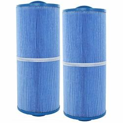 2 Guardian Pool Spa Filter Cartridges Replace FC-0196M 5CH-502 PPM50SC-F2M-M Antimicrobial