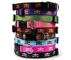 Skull & Crossbones Dog Collar - Pink With White - Medium 14 To 20 Inch Length X 1 Inch Wide - With Tag-a-long Id Tag System