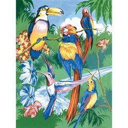 """Royal Brush Manufacturing Company Royal Brush PJS15 9"""" X 12"""" 9""""X12"""" Junior Small Paint By - Tropical Birds"""